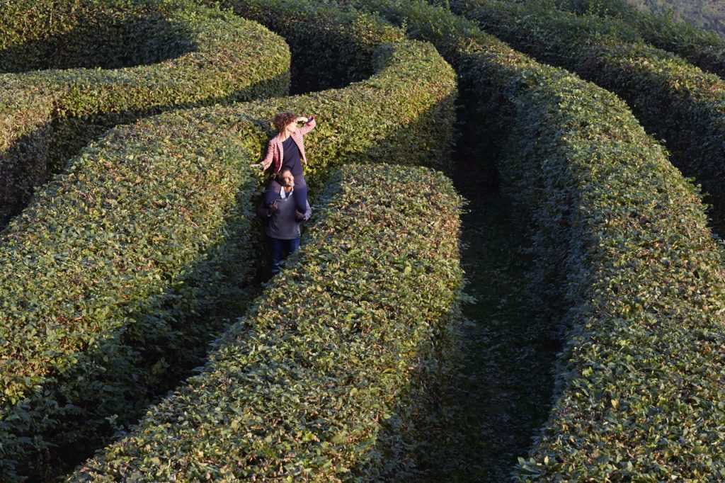 Non tutti quelli che vagano sono persi (J.R.R. Tolkien) CREDITS: Labirinto del Castello di Masino, sito FAI