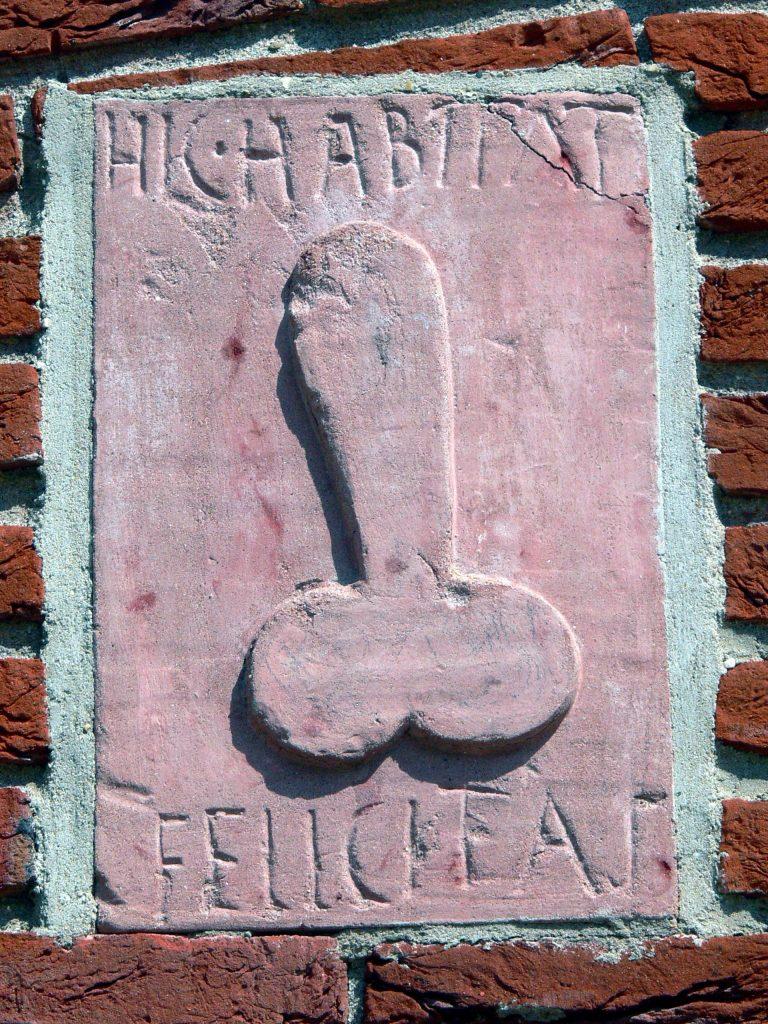 Qui abita la felicità! Hic habitat felicitas Motto latino vergato su una parete di un edificio di Pompei. La supposizione iniziale che si trattasse di un lupanare (tradotto: bordello) ha lasciato il posto alla certezza che la frase era solita essere incisa sui muri domestici come simbolo di buon auspicio. Insomma: il pene porta bene! CREDITS: immagine web